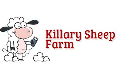 Killary Sheep Farm
